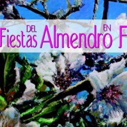 Tejeda. Fiestas del Almendro en Flor 2015