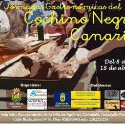 V Jornadas gastronomicas de Cochino Negro